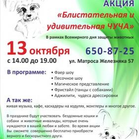 13 октября - в поддержку бездомных животных